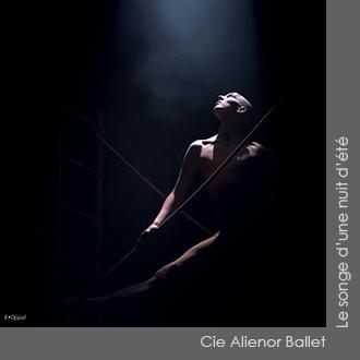 Cie Alienor Ballet - Le songe d'une nuit d'été - Chorégraphie Pascal Touzeau
